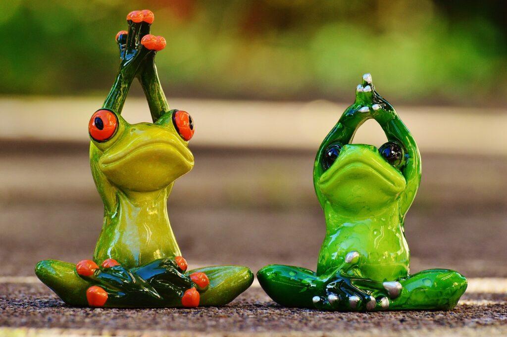 frogs, figure, yoga